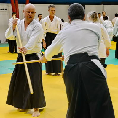 Aikido 50 Ducey